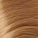 Kit extension Volume + Lisse 55cm Couleur #16 - Châtain noisette