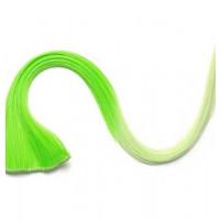 Extension Gardien Color 2 clips 55cm Couleur #K10 - Vert / Vert clair 801-K10-50